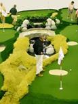 高爾夫選法