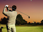 高爾夫球桿與球的種類入門