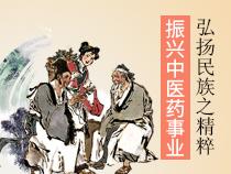 中医药文化及发展现状