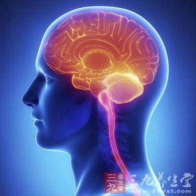 比如光或者声音,然后用电子信号进行回应,随着神经到达大脑的各个区域