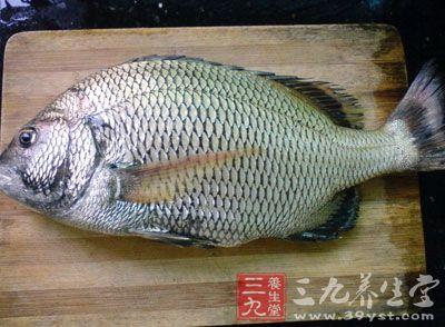 鱼肉具有营养丰富、口感好和易于消化吸收