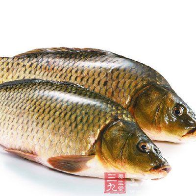 鱼脑中含有丰富的多不饱和脂肪酸和磷脂类物质