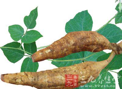 葛根主要含碳水化合物,植物蛋白,多种维生素和矿物质,此外还含有黄酮类物质:大豆素,大豆甙,还有大豆素-4,7-二葡萄糖甙,葛根素,葛根素-7-木糖甙,葛根醇,葛根藤及异黄酮甙等。