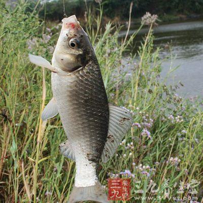 钓鱼技巧 你不知道的钓鱼技巧大全(12)
