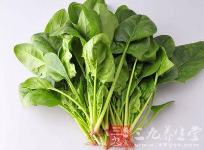 多吃菠菜可以保护男性视力