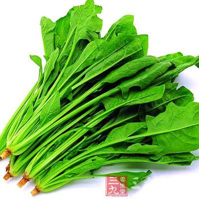菠菜的营养价值 常吃菠菜有哪些好处