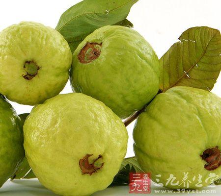 番石榴的营养价值 吃番石榴营养多多(15)