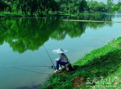 春季钓鱼技巧 最全的春季垂钓技巧总结