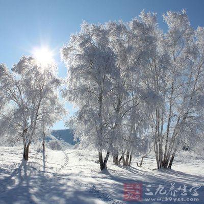 """大雪养生 24节气大雪养生""""七宜"""""""