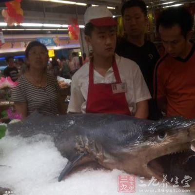 2013年有一项研究对捕于印度尼西亚布鲁岛(buru island)的鲨鱼做了