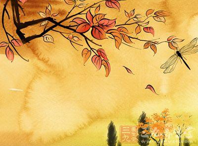 秋分养生 预防秋燥的12种食物