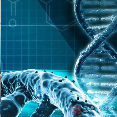 科学家发现预测寿命和肺部疾病新靶点