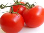 值得注意的番茄食用禁忌
