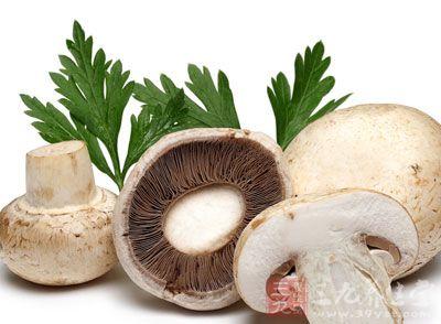 蘑菇的功效与作用 多吃蘑菇防肝癌