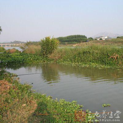 春天钓鱼技巧 三春如何钓鱼(3)