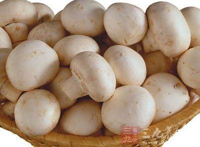 蘑菇的功效与作用 每天4个竟然补充维D