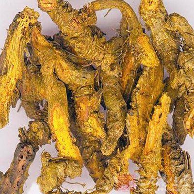 中药黄连最好不要吃,因为黄连性寒