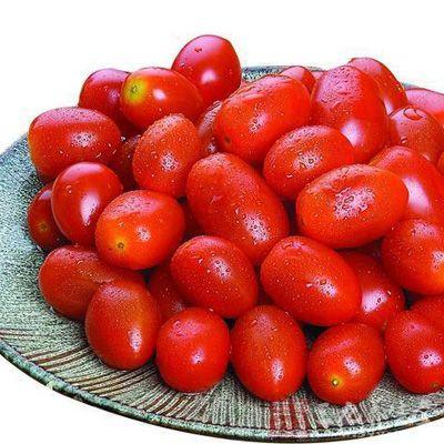 孕妇吃小番茄的注意事项