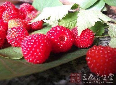 为蔷薇科植物山刺玫的果实