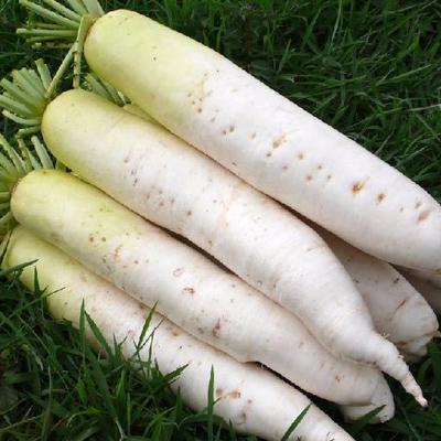 晚上吃减肥晚上吃十大蔬菜减肥(9)跑步肚子瘦的好慢图片