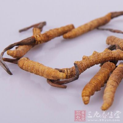 """冬虫夏草是一味当今最名贵的中药补益药材,有""""东方珍宝""""之称"""