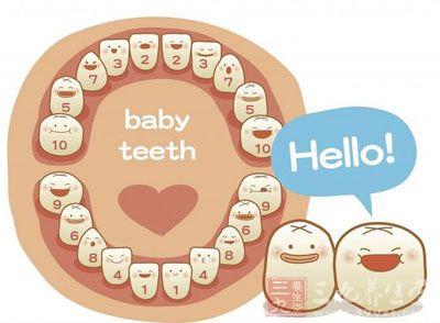 儿童牙齿生长顺序