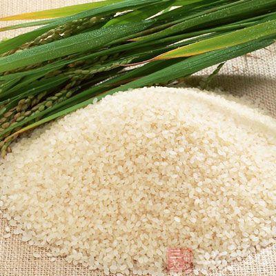 主食一般以米、面为主