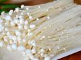 金针菇对抗皮肤过敏