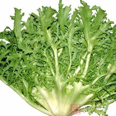苦苣不仅在中国广为人知,在欧洲也有不少知音。据介绍,欧洲常见的苦苣菜