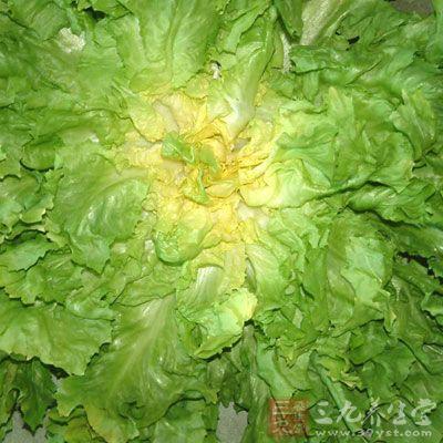 苦菊中含有蒲公英甾醇、胆碱等成分,对金黄色葡萄球菌耐药菌株