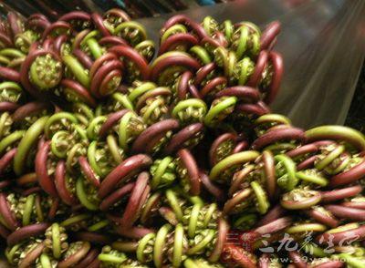 蕨菜(Pteridium aquilinum var.latiusculum)又叫拳头菜、猫爪、龙头菜