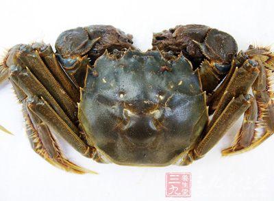 河蟹内部结构图