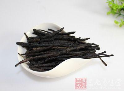 苦丁茶的功效与作用及食用方法