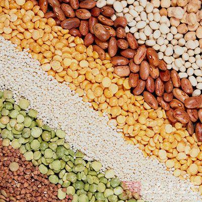 豆类玉米粘贴画图片