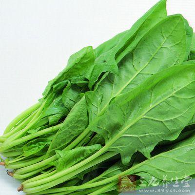 菠菜是很常见的蔬菜,补血满分,富含大量的铁质胡萝卜素
