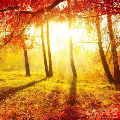 最佳的断食季节是秋季