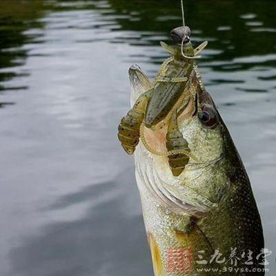 夏季钓鱼 出海钓鱼技巧多(6)