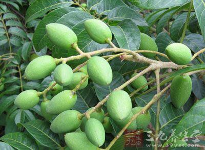 肝火旺吃什么水果 13种水果有效降肝火