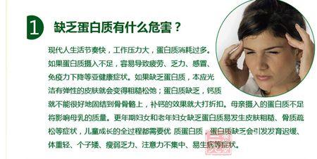金日牌果维蛋白质粉(3)