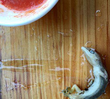 小店吃早餐汤里吃出的已煮熟的壁虎