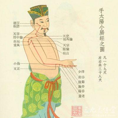 中医经络养生 经络对身体的重要性你知道吗(4)