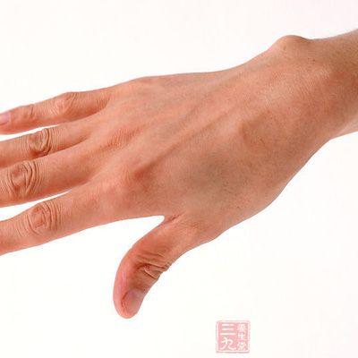 手背血管结构图