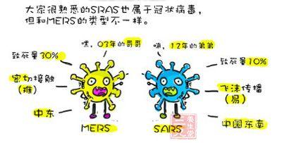 大家很熟悉的sras也属于冠状病毒,但和mers的类型不一样图片