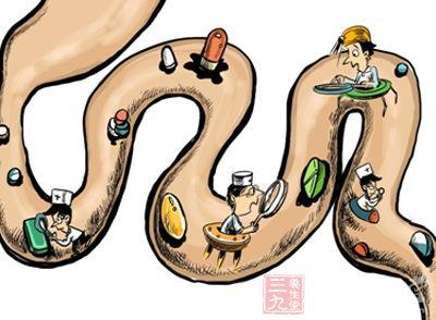 身体脏器结构图
