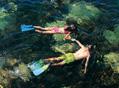 夏季游泳的禁忌