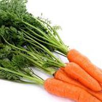胡萝卜的食疗价值与食用禁忌
