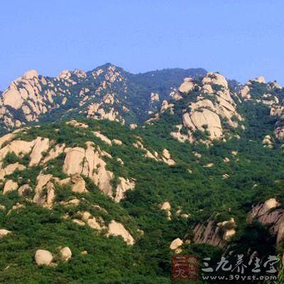 北京凤凰岭自然风景区位于海淀区聂各庄乡境内