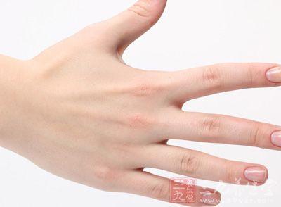 手指皮肤组织结构图