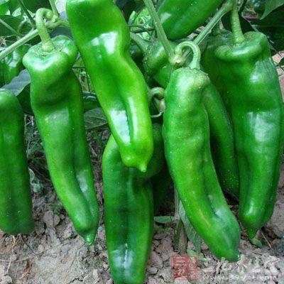 夏天多吃辣椒能够防止血液凝固
