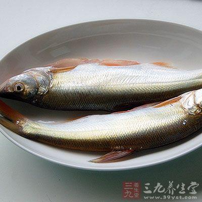 太湖三白是什么_鱼的营养价值 夏天吃什么鱼好